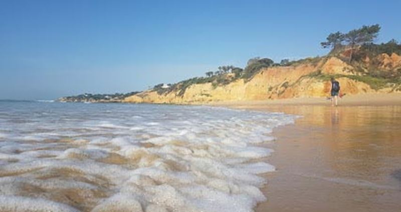 Albufeira Luxury Holiday Accommodation Near to Maria Luisa Beach by Rent a Casa Albufeira Luxury Holiday Accommodation